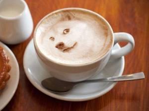 Un chien dans mon café